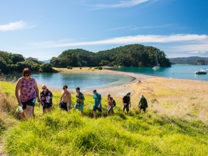 Bay of Islands Overnight Cruise, escape on Roberton Island