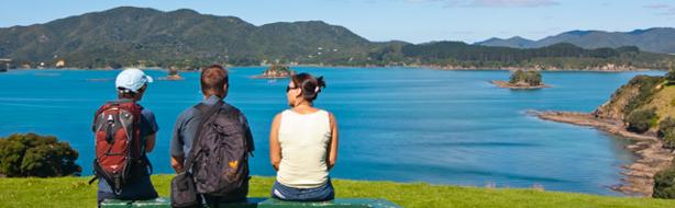 Explore Otehei Bay panorama-1