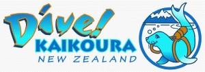 1 DK NZ Col long logo