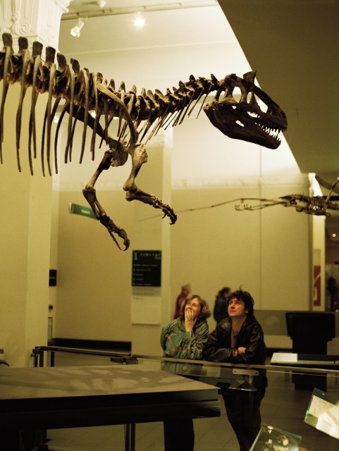 Natural History - Auckland Museum