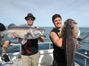 Groper Fishing Charters Kaikoura