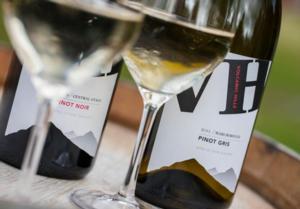 Skyline_Rotorua_-_Volcanic_Hills_Wine
