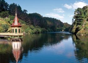 Zealandia-Wildlife-Reserve cropped_6786