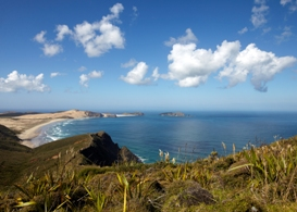 Cape Maria Van Diemen from Cape reinga