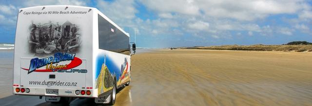 Dune Rider Panorama