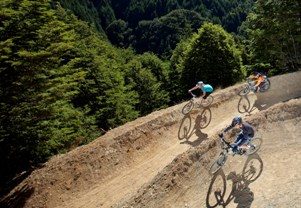 Queenstown Mountain biking trails