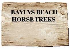 Baylys Beach Horse logo