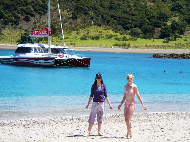 Carino Sailing Bay of Islands 4