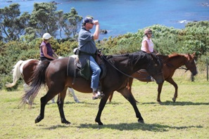 Kates Horse Riding treks kerikeri - Horse riding over farmland