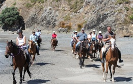 Kates Horse Riding Centre kerikeri - Horse riding on beach