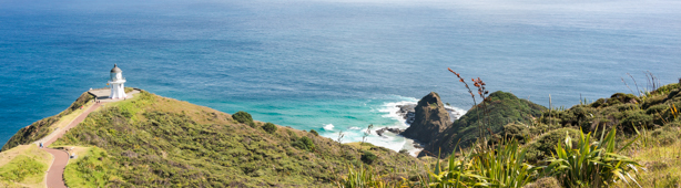 Cape Reinga Sand Safaris Panorama-1