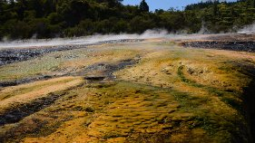 Orakei_Korako_Rotorua_thermal_park_steam_rising