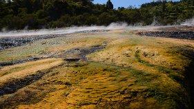 Orakei_Korako_Rotorua_thermal_park_steam_rising