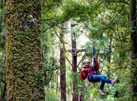 Rotorua_Canopy_Tours_4