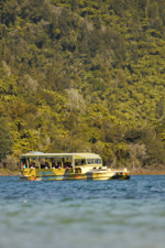 Rotorua-Duck-Tours-225-2