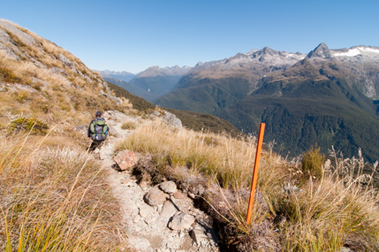 Routeburn-Track-Hollyford Valley-17