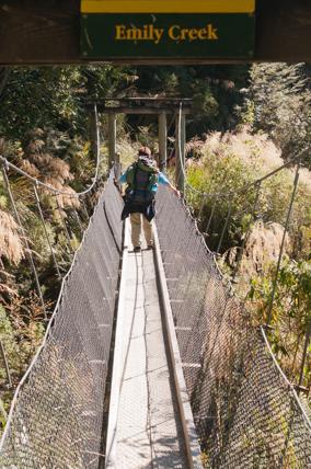 Routeburn-Track-en-route-to-Routeburn-Falls-Hut-6
