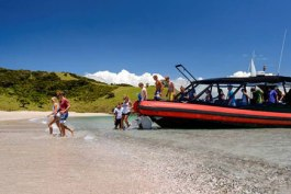 island_adventurer_walking-tracks-Bay-of-islands