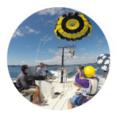 Parasailing-trips-Bay-of-Islands-pricing-6