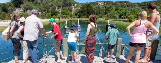 Huka-Prawn-Park-fishing-lake-Taupo-panorama