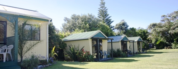 Baylys-beach-holiday-park-campground-dargaville-kauri-coast