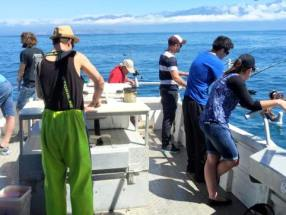 Kaikoura_Fishing_Charters_Tours-2