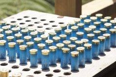 adventure-playground-rotorua-clay-bird-shooting-ammunition