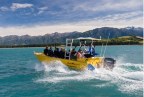 swim-with-the-seals-trips-in-kaikoura-passengers-on-boat