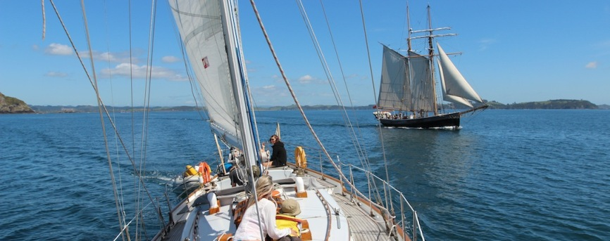 bay-of-islands-sailing-trips-vigilant-yacht-charters-12