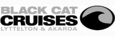 black-cat-dolphin-swim-akaroa-logo