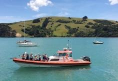 eco-seaker-akaroa-dolphin-swimming-trips-nature-tours-scenery-the-boat