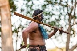 waitangi-treaty-grounds-maori-cultural-performabnce