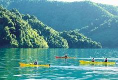 half-day-kayaking-guided-tours-marlborough-picton-3