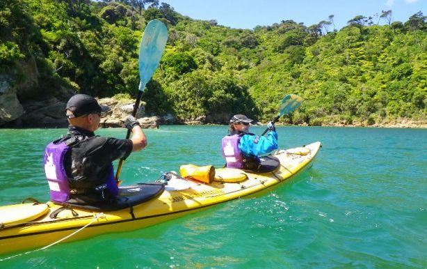 half-day-kayaking-guided-tours-marlborough-picton