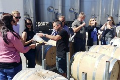wine-tasting-tours-marlborough-blenheim-hop-n-grape-2