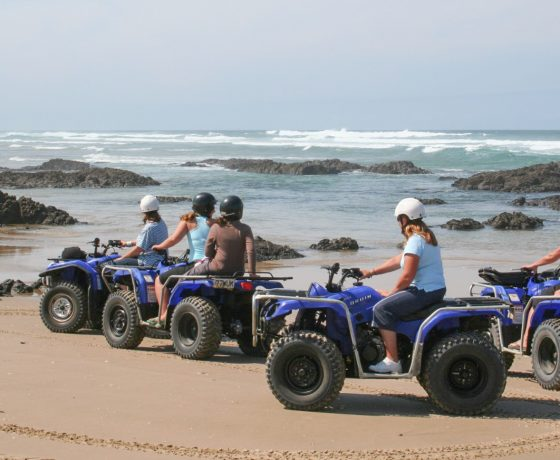 Bus tours to Cape Reinga lighthouse, drive along Ninety Mile