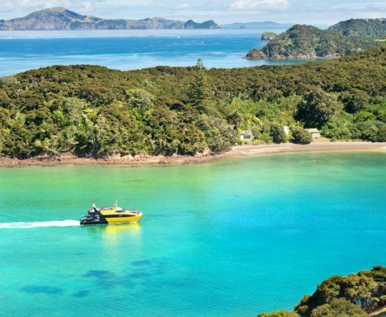 Paihia Ferry To Urupukapuka Island