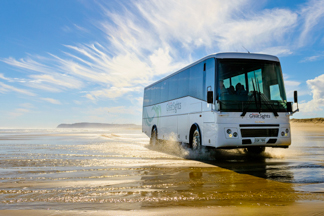 Bus tour on 90 mile beach to Cape Reinga
