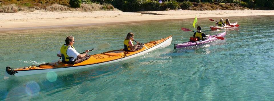 coastal-kayakers-guided-kayak-trips-waitangi-river-to-haruru-falls-2