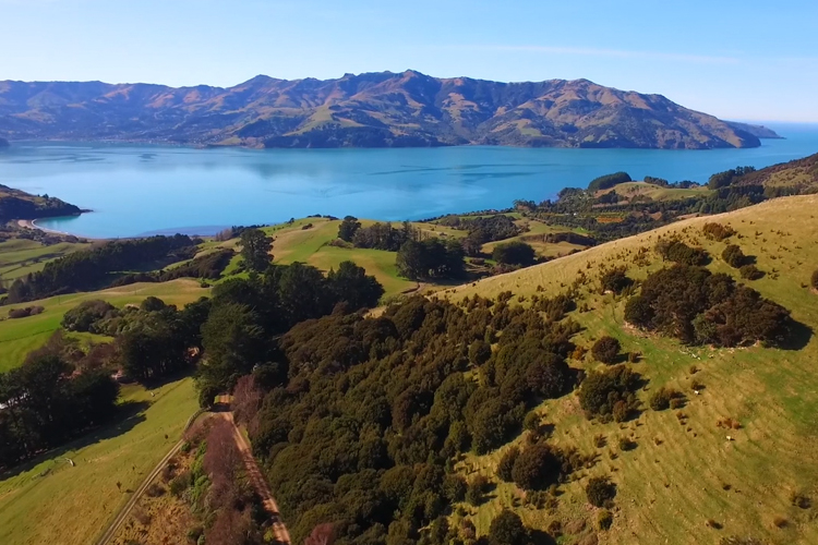 Akaroa Electric Mountain Bike Hire Amp Guided Tours Is A Fun