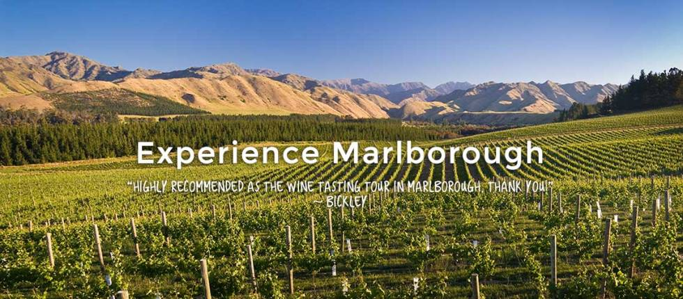 experience-marlborough-wines-hop-n-grape-2