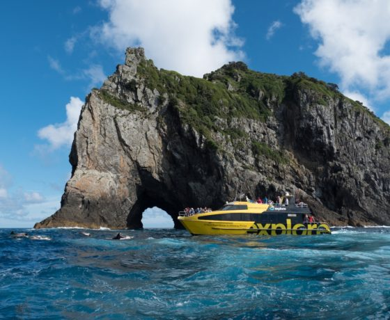 Fullers Bay Of Islands Hole In The Rock
