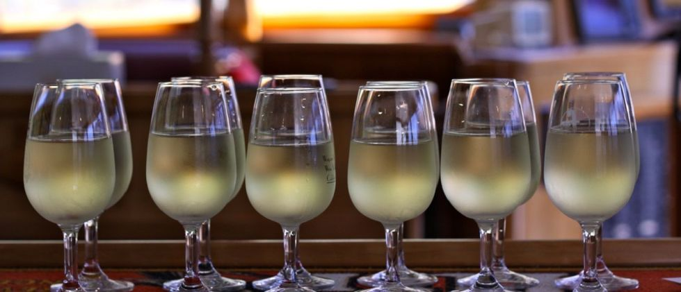 marlborough-wine-seafood-cruise-odyssea