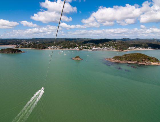 Flying Kiwi New Zealand Tours