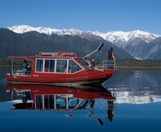 New Zealand Skyline Gondola Tour With Dinner