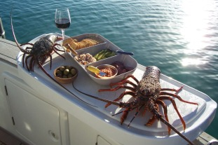 grand-cru-fishing-charters-bay-of-islands-see-the-islands-cruise