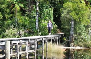 Hokitika-scenic-tours-Lake-kaniere-west-coast-south-island-6