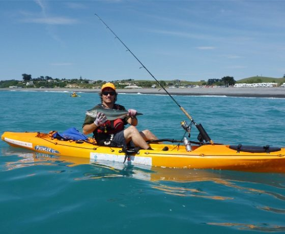 Kaikoura sea kayaking trips kayak seal tours in kaikoura nz for New fishing kayaks 2017