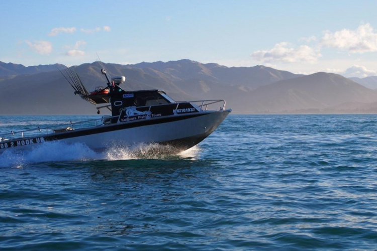Kaikoura fishing charters groper trips for Charter fishing trip