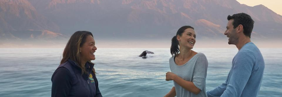 whale-watch-kaikoura-tourists-viewing-whales-2